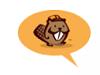 Beaver Builder Video Tutorial
